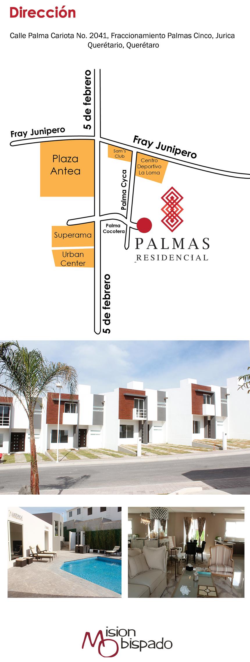 Palmas-Part