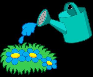 cuidado del agua plantas