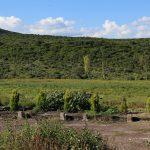 Vista en los cues Campestre del Lago Queretaro