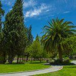 areas-verdes-Arboretto-Residencial-Queretaro