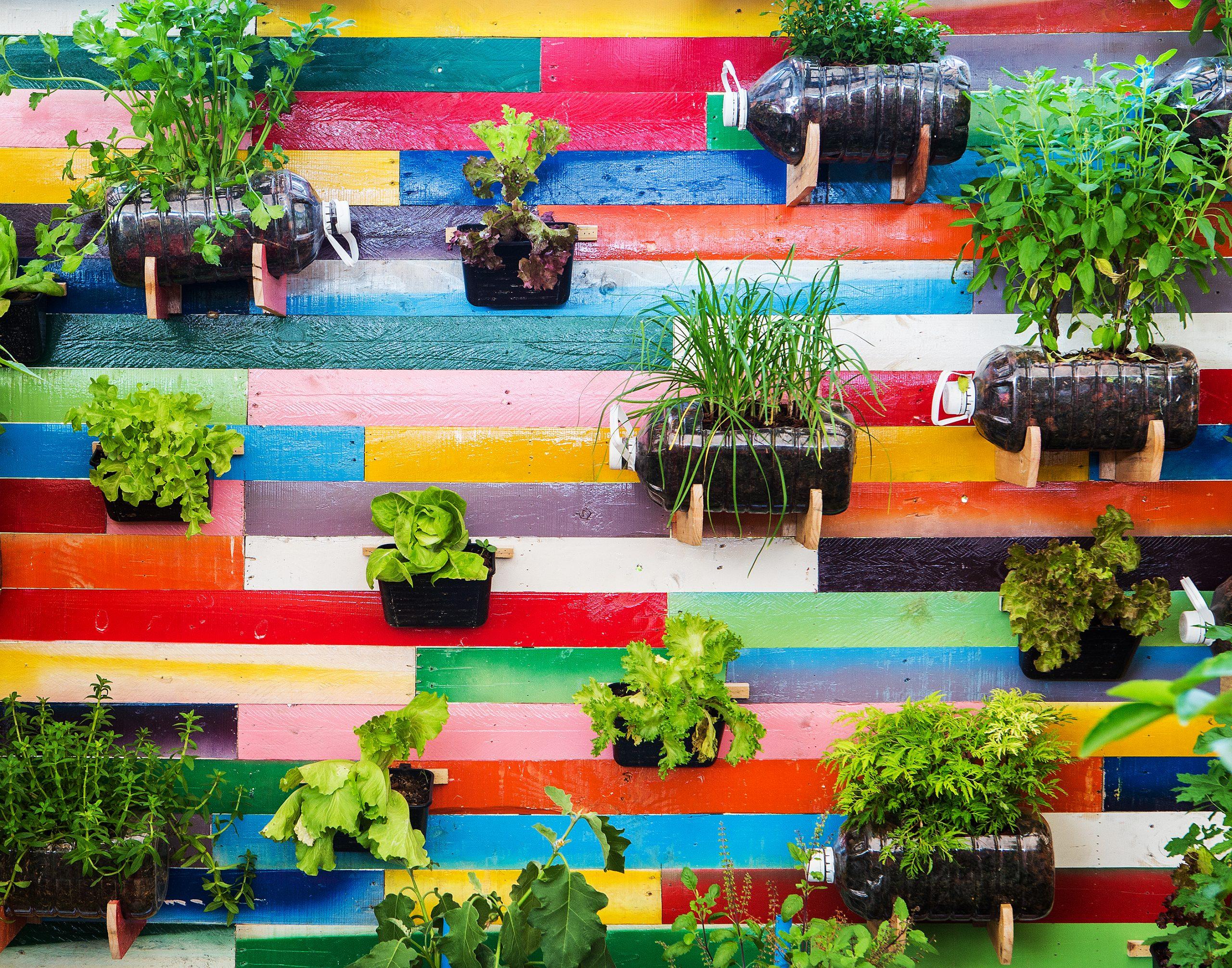Cómo hacer un Jardín Urbano