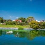lago con patos Gran Reserva Juriquilla Queretaro