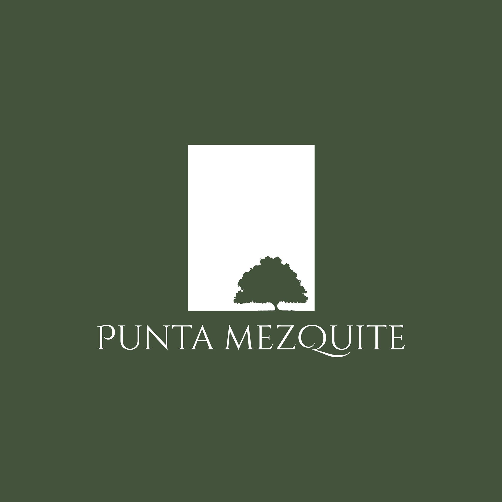 Punta Mezquite